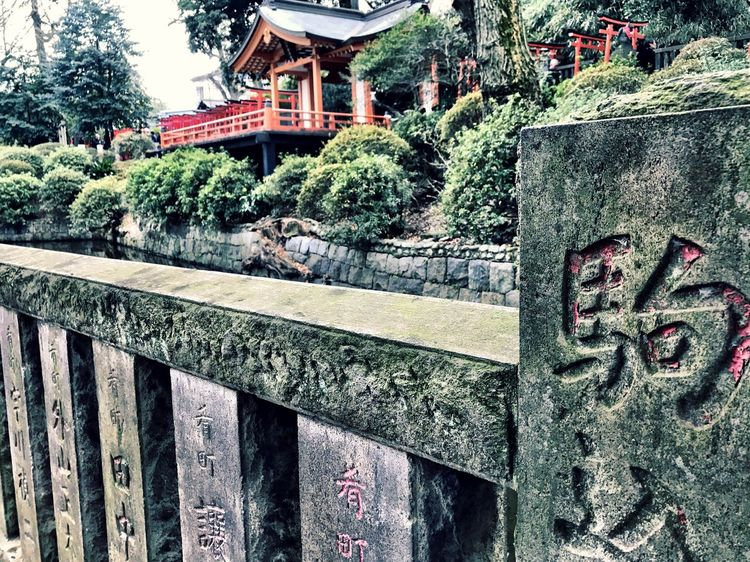 Focus On Foreground Tree Built Structure Outdoors Architecture Day No People Building Exterior Shotoniphone7 Place Of Worship Beauty In Nature Nezu Shrine Shrines & Temples EyeEmJapan Japan Photography (null)Shrine Of Japan Tranquility IPhoneography