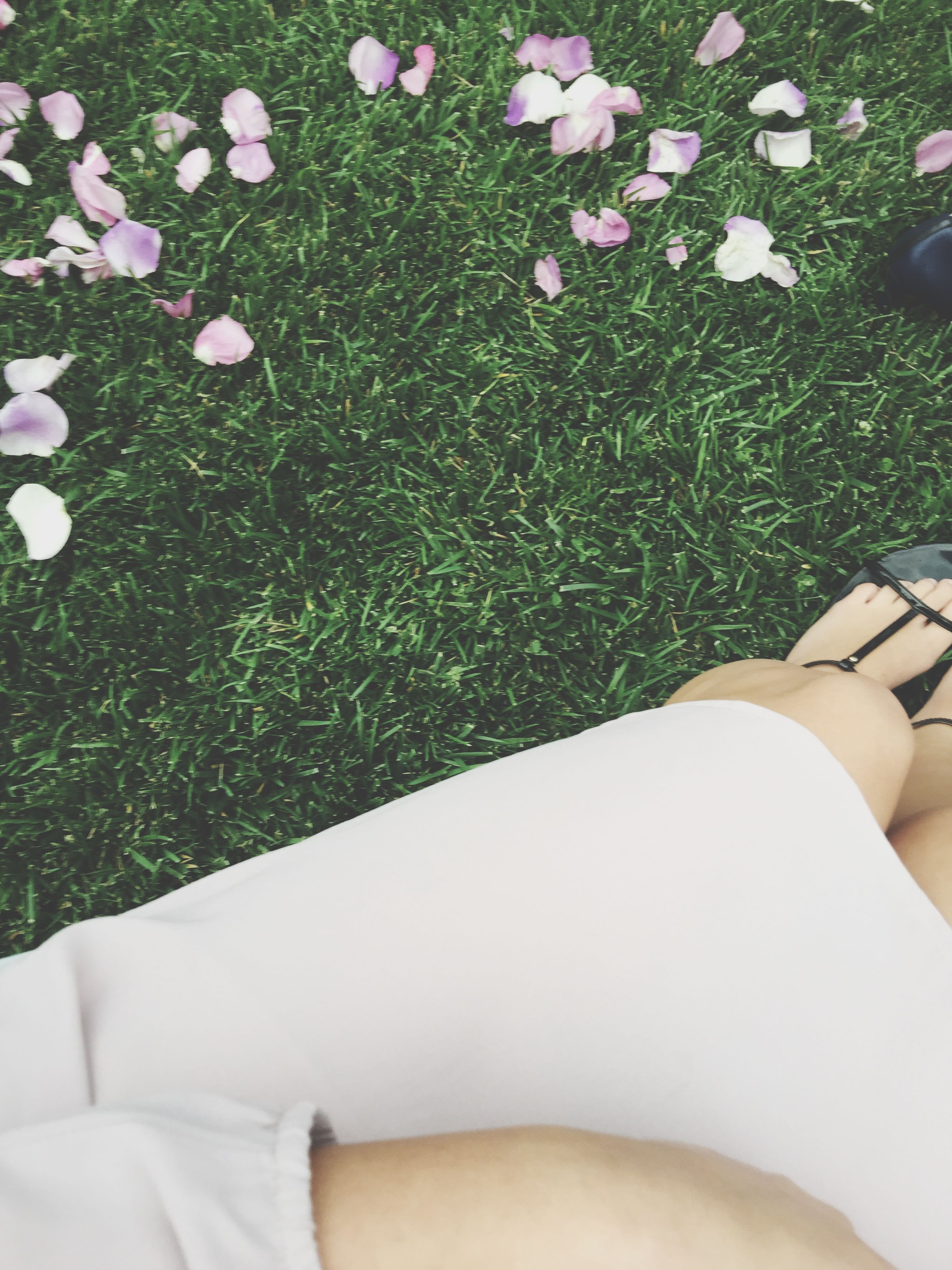 low section, person, grass, personal perspective, high angle view, flower, field, lifestyles, leisure activity, growth, green color, white color, human foot, plant, nature, shoe