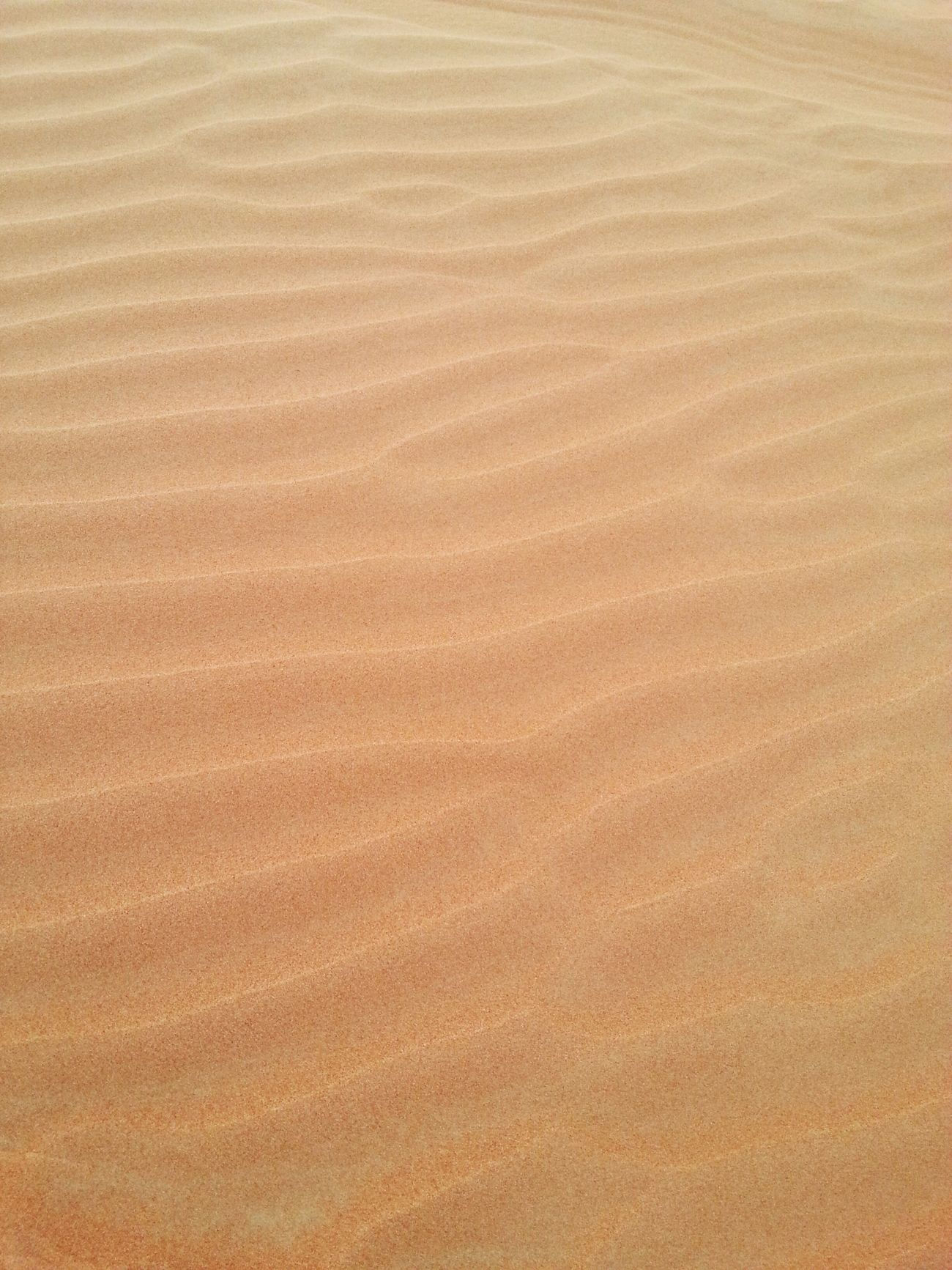 DESERT SAND. It was so soft and fine like coffee mate.UAE Sand Safari Enjoying Life Seize The Day Relaxing Adventure Eyem Best Shots Eyem Gallery Eyemphotos Hello World
