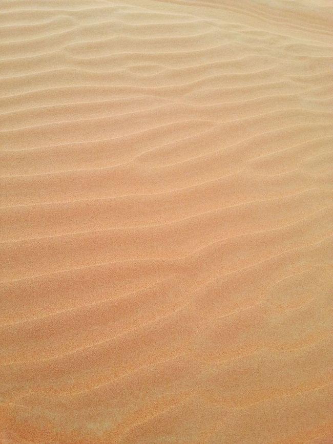 DESERT SAND. It was so soft and fine like coffee mate.UAE Sand Safari Enjoying Life Seize The Day Relaxing Adventure Eyem Best Shots Eyem Gallery Eyemphotos Hello World