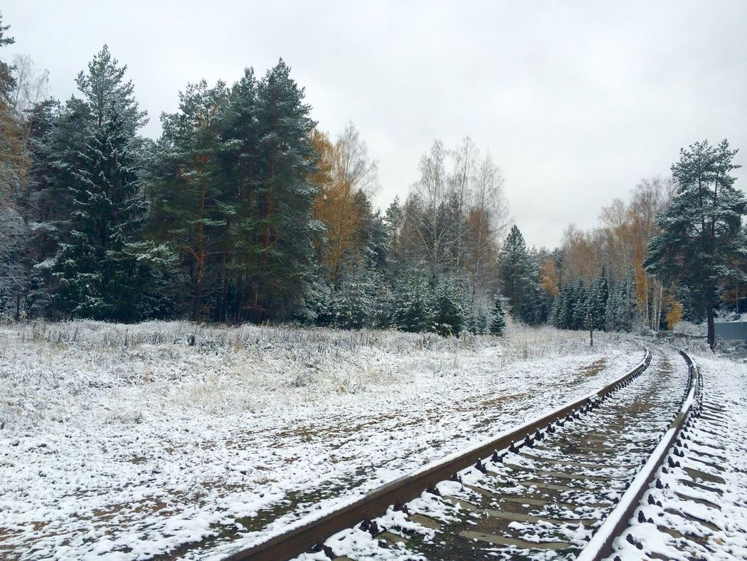 Beauty In Nature Cold Temperature Covering Empty Forest Landscape Nature No People Outdoors Railroad Track Railway Road Russia Scenics Season  Snow The Way Forward Tranquility Weather Winter