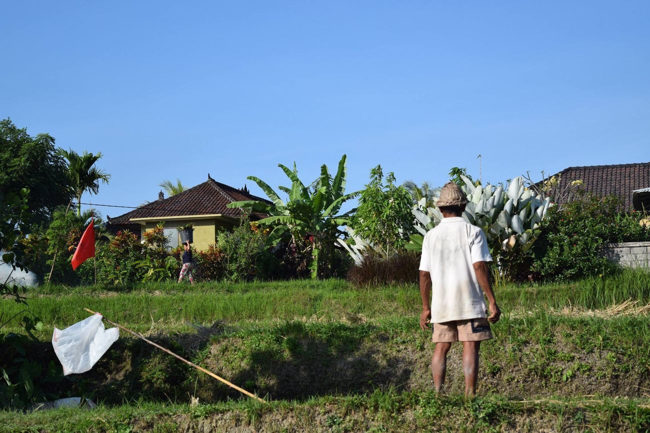 Rice Terraces Bali Ubud Man Village Life The Street Photographer - 2017 EyeEm Awards