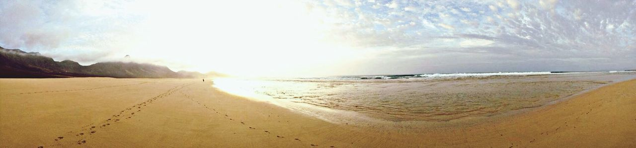 sand, sea, nature, beach, scenics, beauty in nature, tranquility, sunlight, day, sky, outdoors, no people, landscape