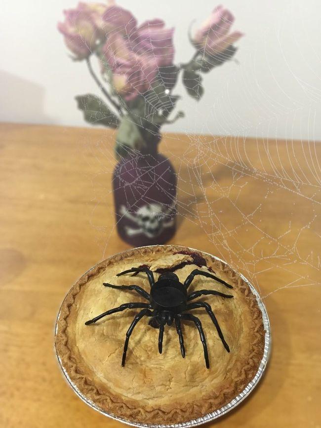 Cherrypie Spiderweb Spider DeadRoses 🕷🕸🌹