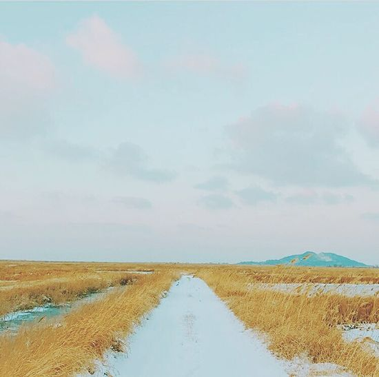 if you're army than you know who's the owner of this pic BTS Cloud - Sky Landscape V Bts V Kimtaehyung Taehyung Kpop Sky No People