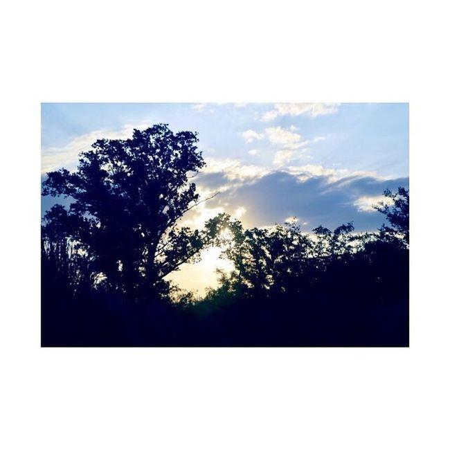 Una del Lunes♥ Paisaje Vista Altagracia Nuves Elcielo VSCO Vscocam Phototheday Good Lunes GoodLunes Veatiful Verycute Cool Naturaly Instalike Like Likeforlike Instamoment Instacam Pic Cloudy♥♥♥
