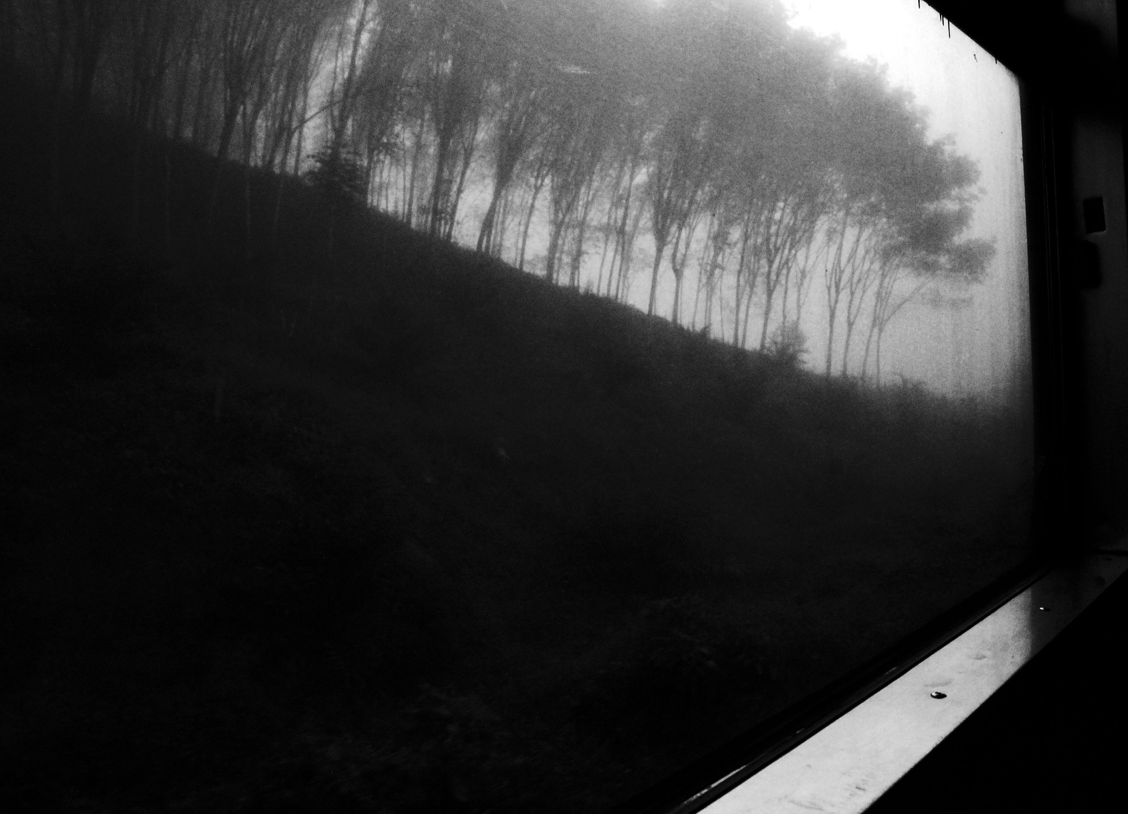 """On the train"" Landscape Black & White Train Traveling"