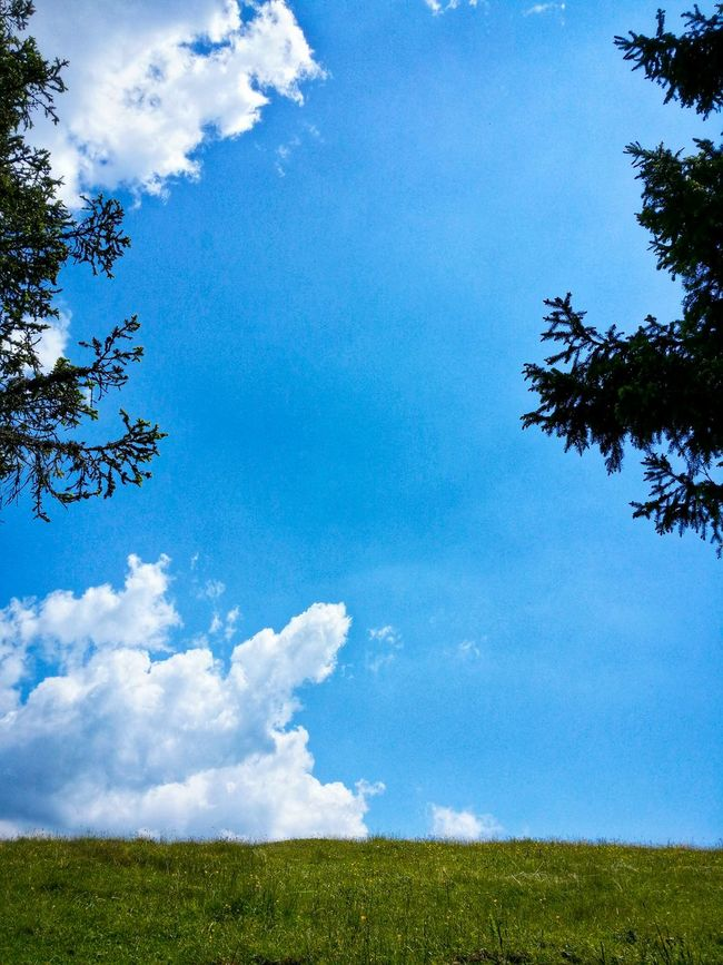 Freedom Wide Breathing Open Air Nature Natural Patterns Firs And Clouds Asiago Highland Asiago Vicenza Veneto Italy Travel Photography Travel Voyage Traveling Mobile Photography Fine Art Photography