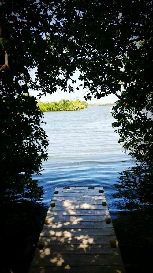 Explore Florida Freelance Photography Nature Beautiful