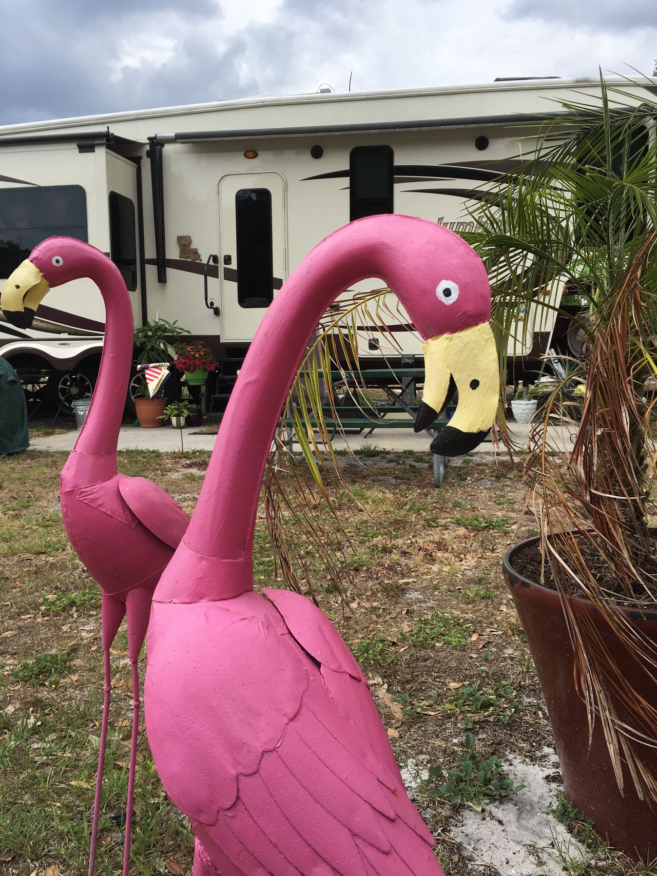 Outdoors Pink Color Day No People Sky Close-up Americana Scenes Flamingo Yard Art Metal Birds Florida Life Florida Rv Park