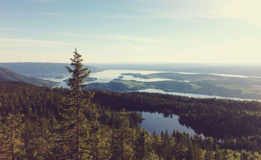 """The view from Gyrihaugen in Nordmarka (translates to """"North forest""""). Oslo Enjoying The View Fjord Forest First Eyeem Photo"""