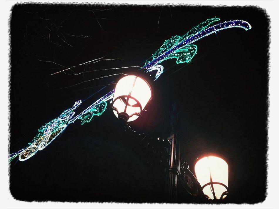 La Luz En La Navidad