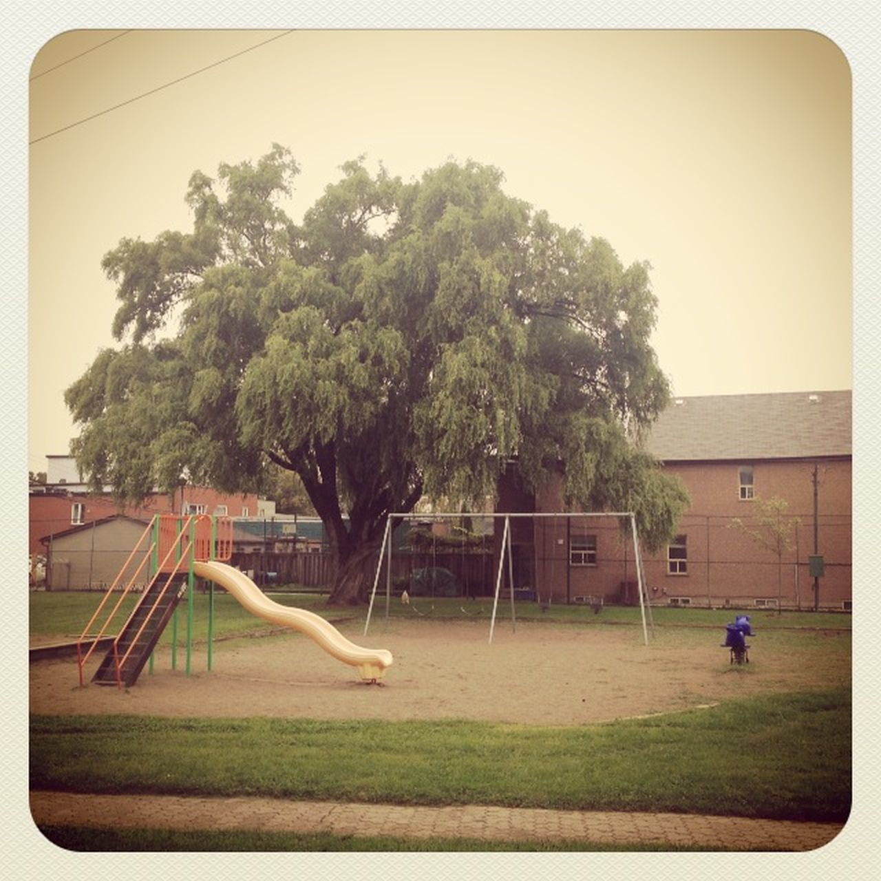 playground, tree, slide, grass, childhood, park - man made space, outdoor play equipment, playing, outdoors, hanging, day, sky, no people, nature