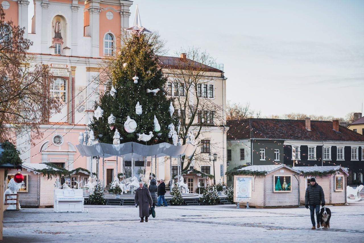 Beautiful stock photos of weihnachtsbaum, built structure, building exterior, architecture, tree