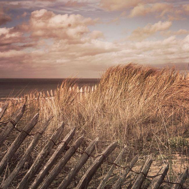 Junobeach Normandy Beach Normandie Dunes Lanscape Landscape_Collection Lanscape Photography Nature_collection Sea Cold Days Seascape