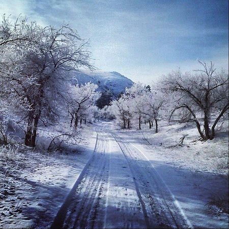 2015  My Best Photo 2014 First Eyeem Photo Russia Buriatia Ulan-Ude House дерево снег зима