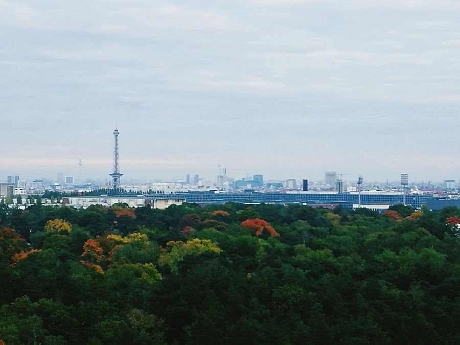 Tree Nature Sky Outdoors City Beauty In Nature No People Day Berlin, Germany  Teufelsberg Berlin Architecture Travel Horizontal