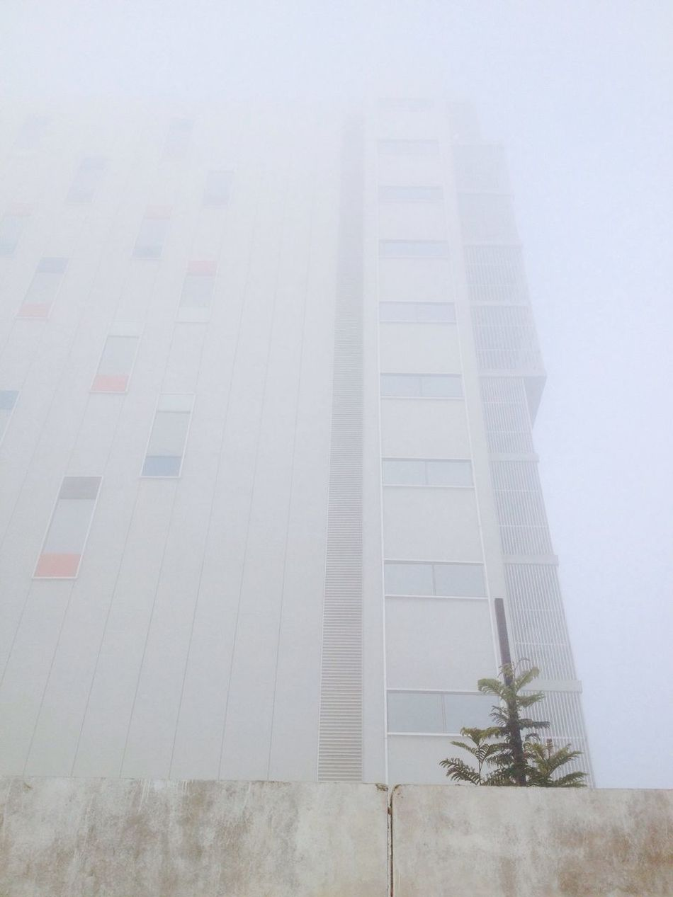 Adapted To The City Building Fog Foggy IPhoneography IPhone Photography IPhone4s IPhone 4S Mobilephotography Mobile Photography Bangalore India