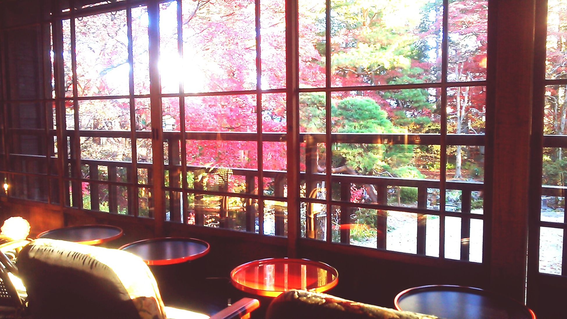 Japanese old mansion Window Indoors  Glass - Material Domestic Life Day Interiors Tourism Vacations Multi Colored Beauty Beautiful Autumn Autumn Leaves Red Nature Japan Japanese