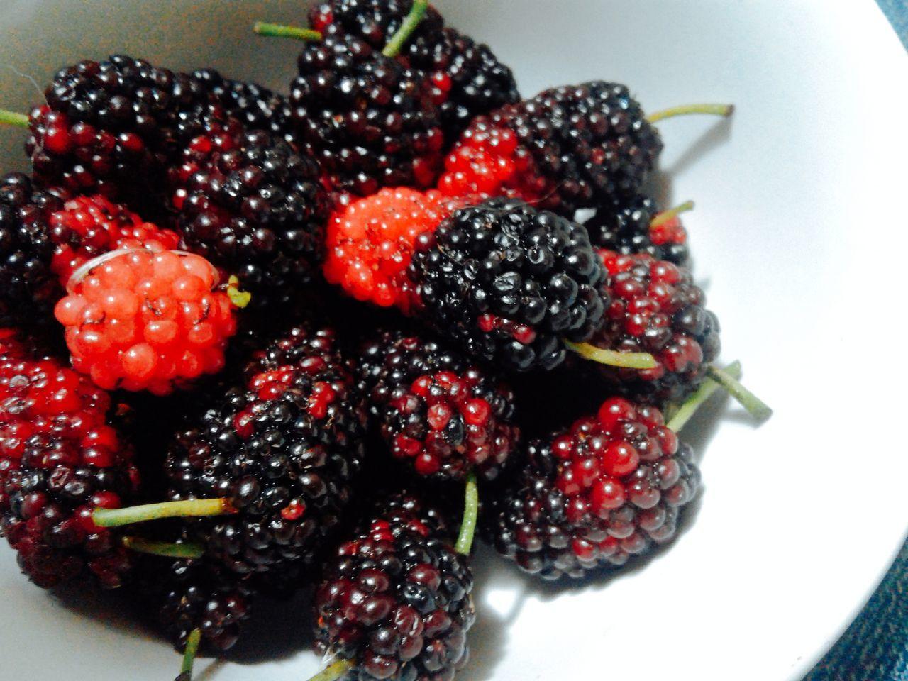 Cherry Cherry Tree Cherrys Strawberries Cherryred Red And Black Taste Tasty😋 Taste Good Taste Of Summer  Sweet♡ Sweets Sweet Food Sweety  Relaxing Taking Photos Enjoying Life That's Me Hello World ♡♡♡♡♡