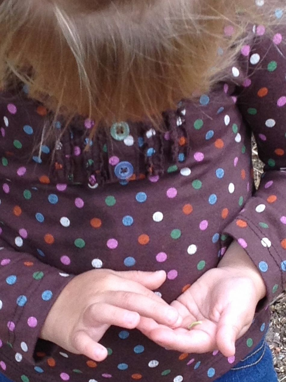 Child Nature Curiosity Worm Llea Showcase: February