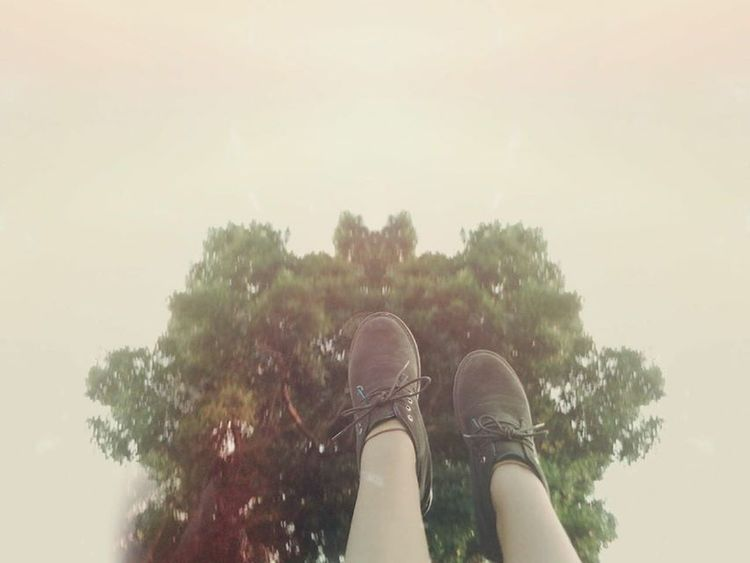 Pies árbol Aire Columpio
