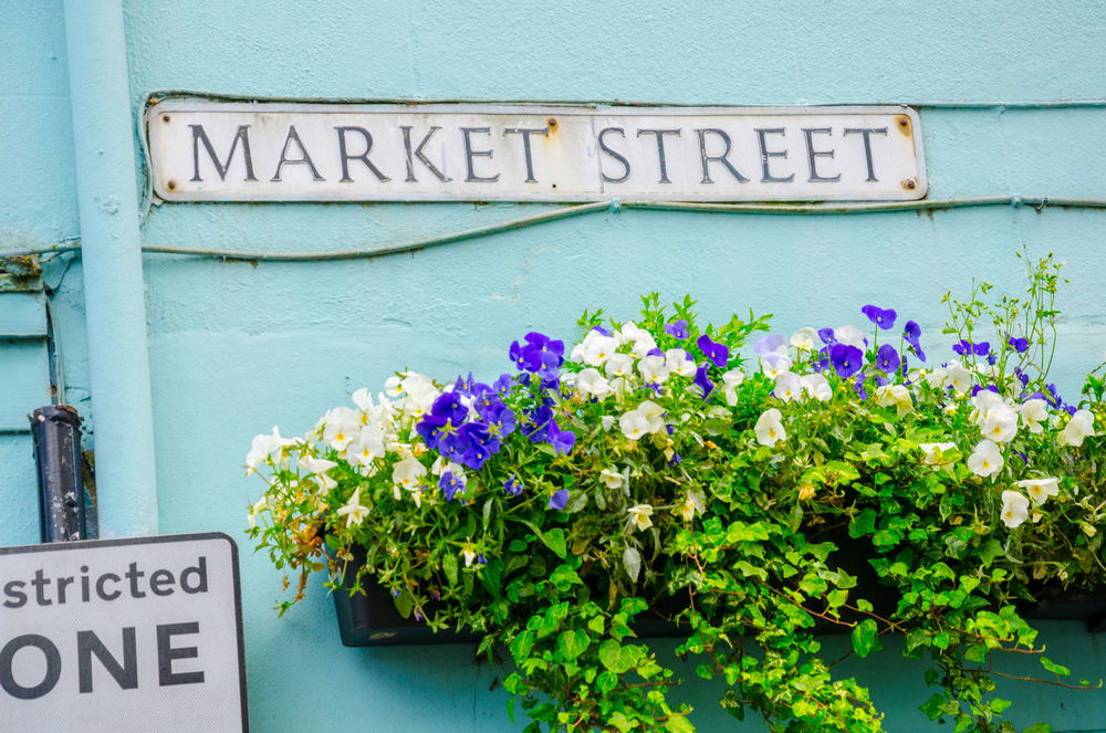 Bedding Plants Blooming Building Exterior Capital Letter Close-up Communication Flower Flowering Flowers Hanging Basket Market Street Outdoors Plant Street Name Street Sign Text Wall