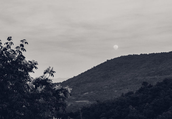 Above The City Black And White Full Moon Hills Moon Moon And Trees Moon In Black And Moonshot