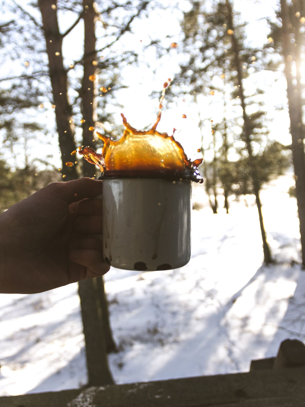 Tree Human Hand Holding Cold Temperature Human Body Part Real People One Person Focus On Foreground Outdoors Day Nature Winter Snow Close-up Men Ice People Coffee Coffee Time Coffee Cup Splash Outdoor Adventure Adventure Club Folk