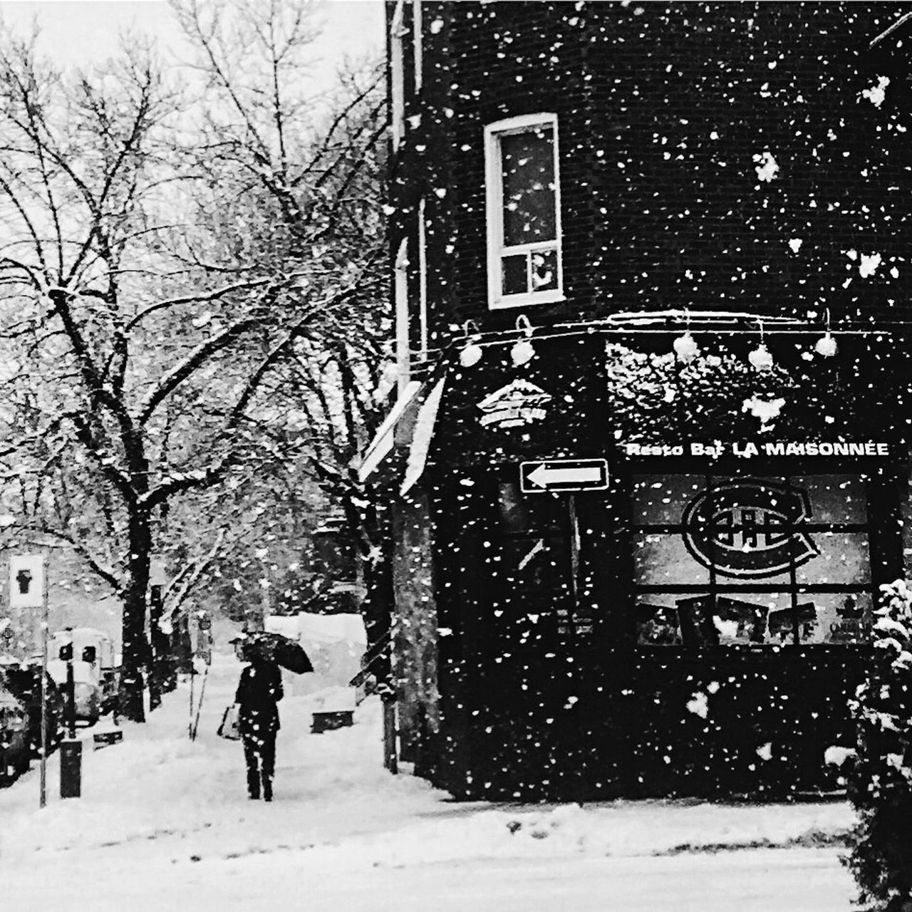 Go Habs Winter Snow Cold Temperature AMPt Community Streetphoto_bw EyeEm Best Shots - Black + White Bw_collection Snow ❄ Winter The Week Of Eyeem Streetphotography Blackandwhite Montréal