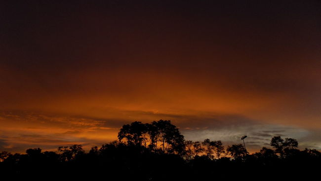 Water Color Beauty In Nature Cloud Cloud - Sky Cloudy Dark Dramatic Sky Landscape Majestic Nature No People Non-urban Scene Orange Color Outdoors Scenics Silhouette Sky Sunset Sunset Silhouettes Sunset_collection Tranquil Scene Tranquility Tree Weather