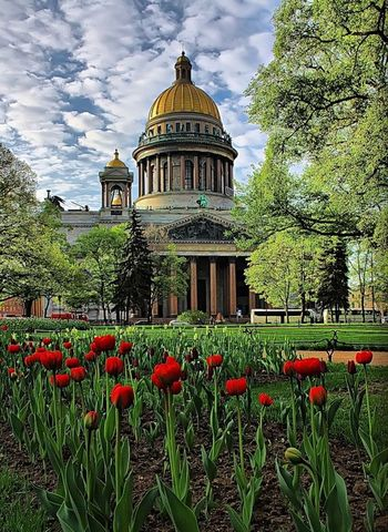 Summer in St. Petersburg