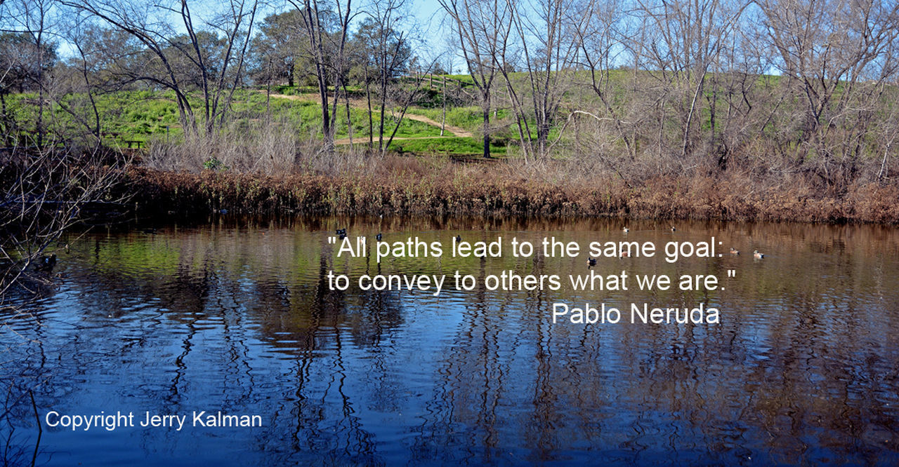 #LosJilguerosPreserve (#FallbrookLandConservancy) North Pond where paths converge and an apt quote by Pablo Neruda in this #quotograph Fallbrook Land Conservancy Los Jilgueros Preser Los Jilgueros Preserve Pablo Bear Pond Pond Life Quotes Quotography