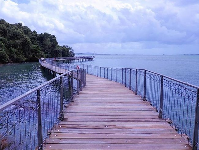 Good Morning~ First day back to work in 2016. It may be the beginning of a long and winding road to some, but do remember to stop once in a while to look back to count your blessings! [2016.01.01] Pulauubin Chekjawa 2016 Goodmorning Nparksbuzz Sg Singapore
