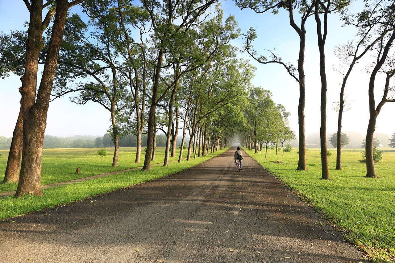 Beautiful Scenery Day Grass Green Color Nature Outdoors Road Scenics Sky The Way Forward Tree 三育基督書院 清晨