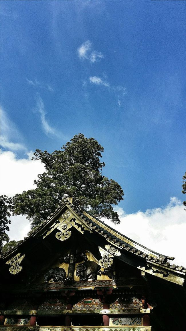 Light And Shadow Building Architecturephotography Architecture_collection Architecturelovers Architecture Shrine Religious  Asian Culture Japanese Culture Japan Nikko Tree Nature Travelp