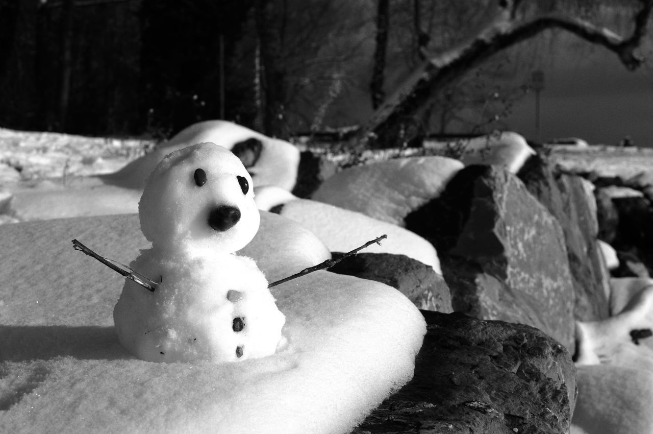 toy, snowman, snow, stuffed toy, human representation, no people, figurine, winter, teddy bear, outdoors, day, close-up, cold temperature, nature