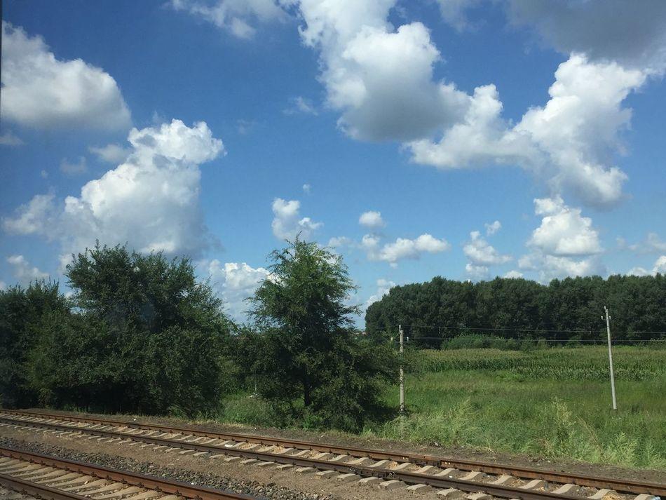 这样悠长的日子,风和日暖,令人愿意永远活下去。