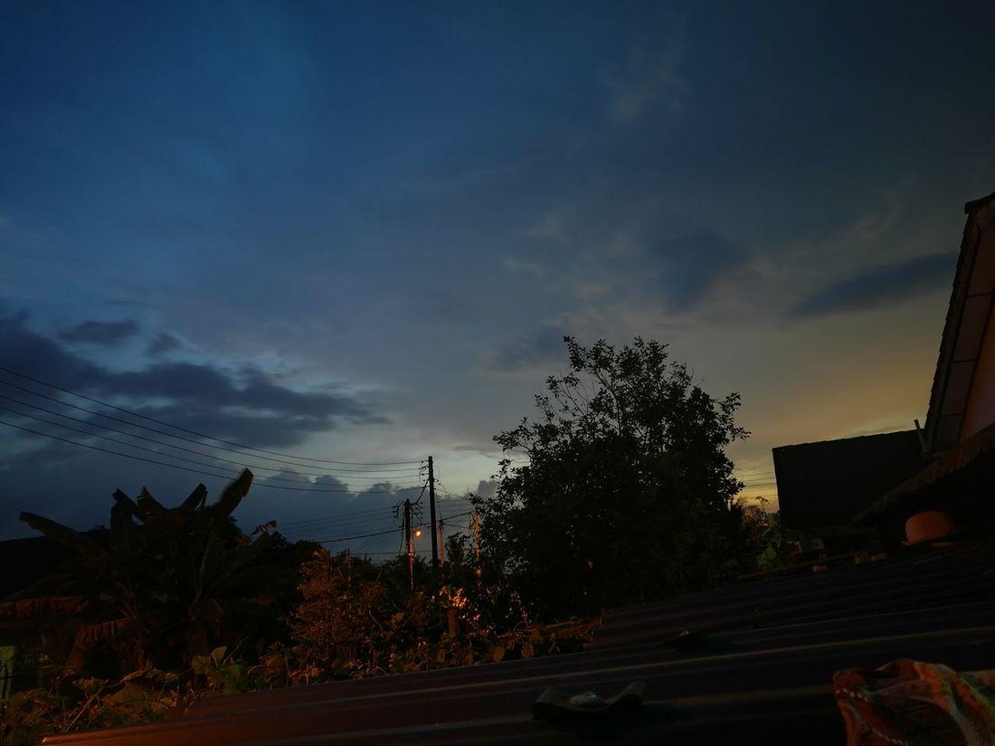 Tree Dramatic Sky Sunset Cloud - Sky Sky No People Outdoors Nature Day Relaxing Moments Wonderful Life Beauty In Nature EyeEm Sell EyeEm Best Shots EyeEm Nature Lover EyeEm Gallery Huawei Honor8 Huawei Fans Honor8