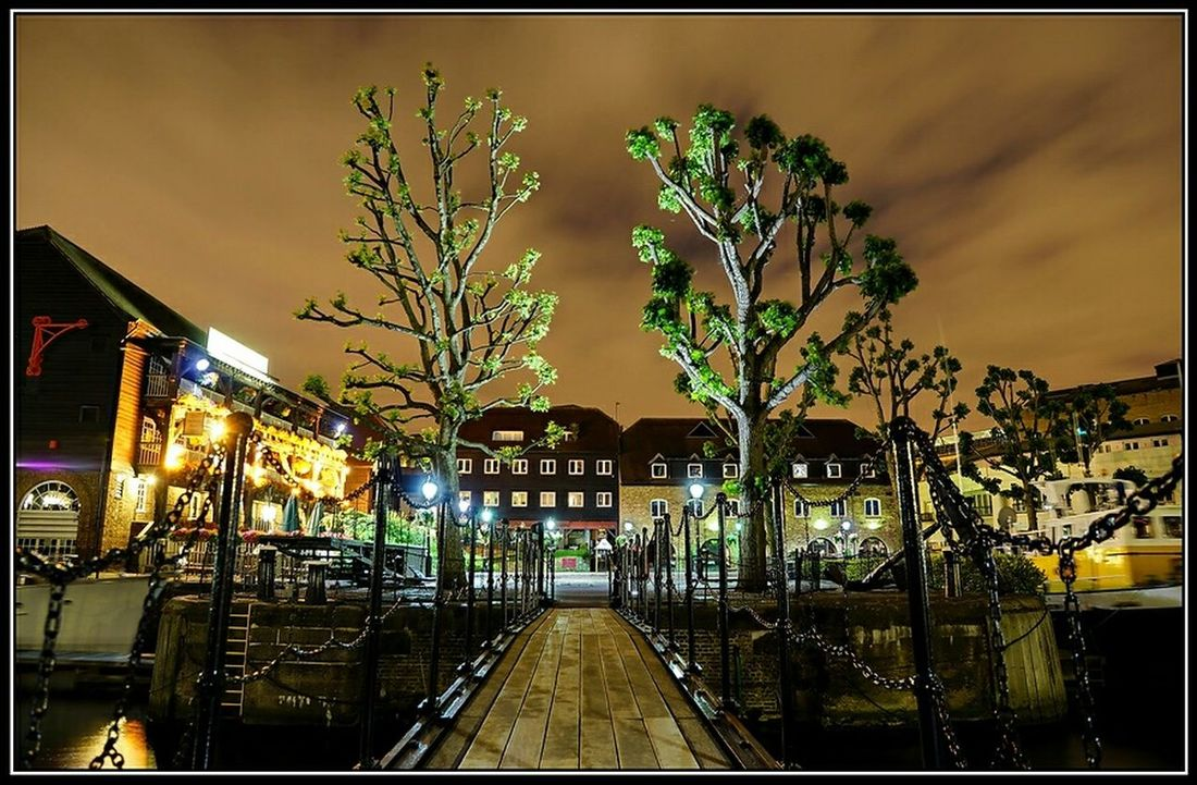 London Night St Catherine Lowlight Midnight Sony Trees Light Light And Shadow Nightphotography