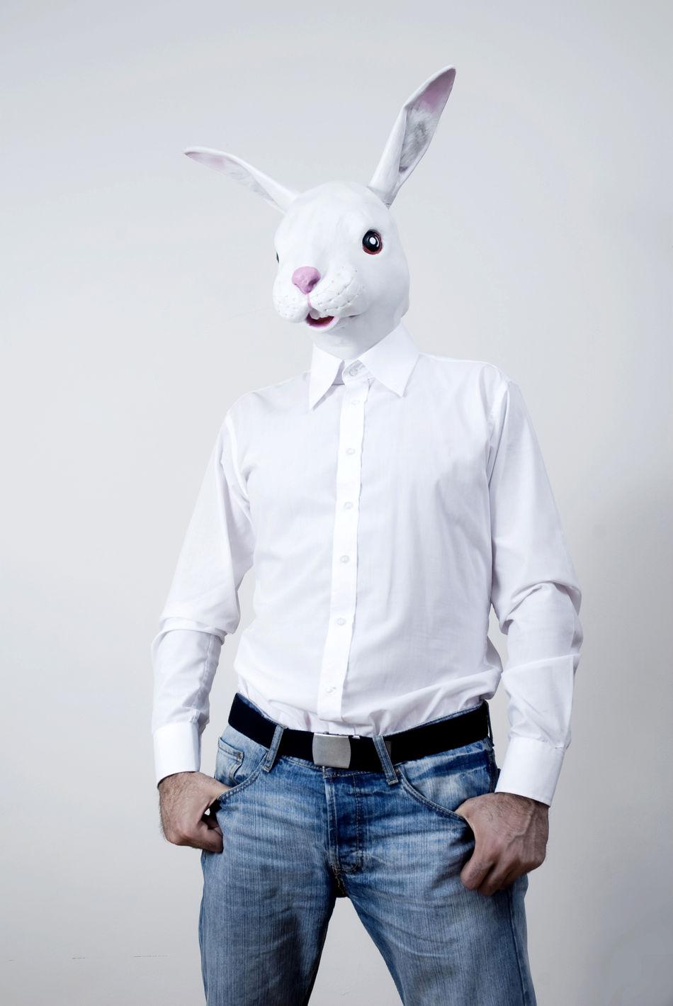 Beautiful stock photos of hasen, Animal Costume, Animal Representation, Bizarre, Button Down Shirt