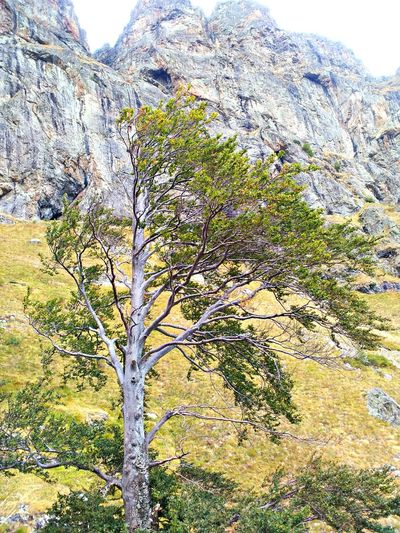 Under The Waterfall Nature Spirit On The Top Of The Mountain Rila Mountain Bulgaria❤️