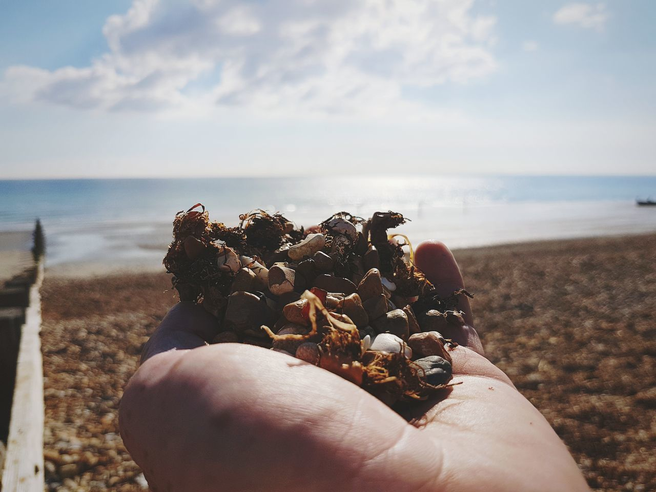 Sea Human Hand Beach Human Body Part Personal Perspective Horizon Over Water Holding Sky Outdoors One Person People Close-up Day Water Seaside Beauty In Nature My Hand