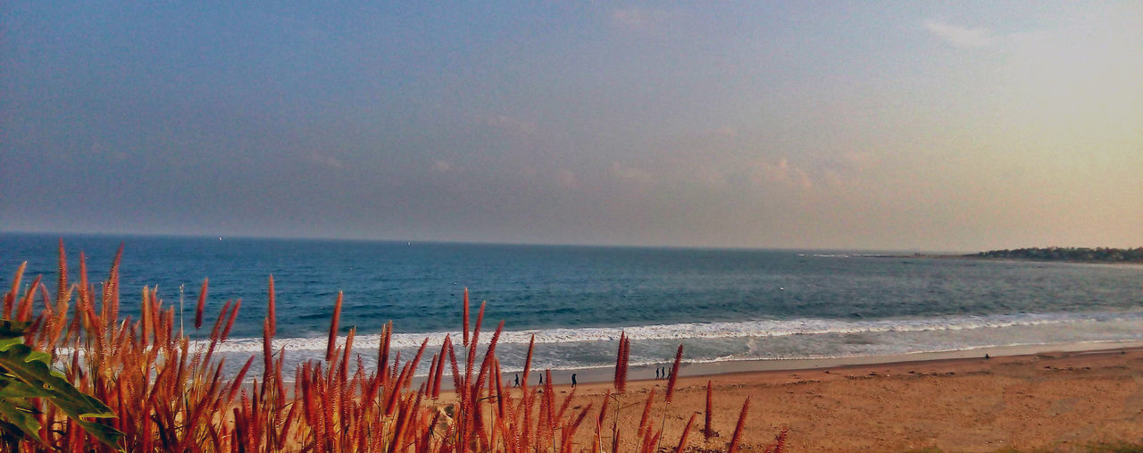scenic view of Beach .... My Fav hangout Place <3 Beautiful Beauty In Nature Beauty In Nature Flower Garden Horizon Over Water India Indiapictures Nature Nature No People Outdoors Scenics Sea Sea And Sky Shore Sky Visakhapatnam Vishakapatnam Vizag Vizag Beach Vizag Beach View Vizag City Water
