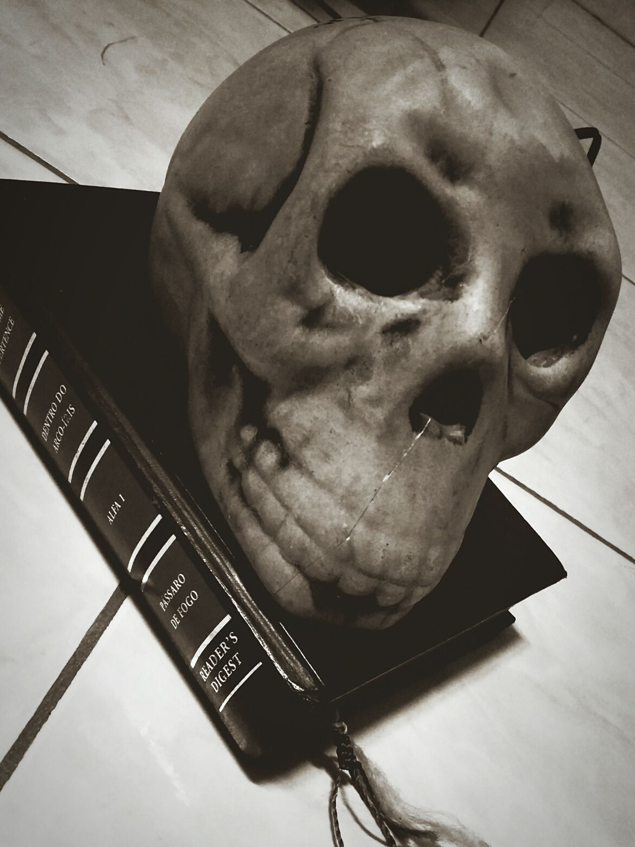 Skeleton Art Skull Book Love Rustic Art Home Is Where The Art Is Mini