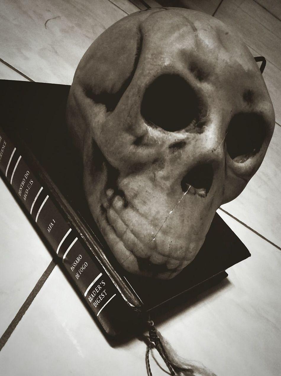 Skeleton Art Skull Book Love Rustic Art Home Is Where The Art Is Mini