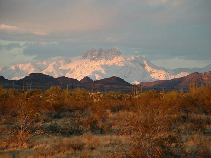 Apache Junction Snowy Mountains Desert Beauty Seeing The Sights EyeEm Selects