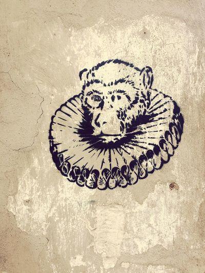 Monkey Graffity Graffiti Art Monkey No People Day Close-up Architecture Outdoors