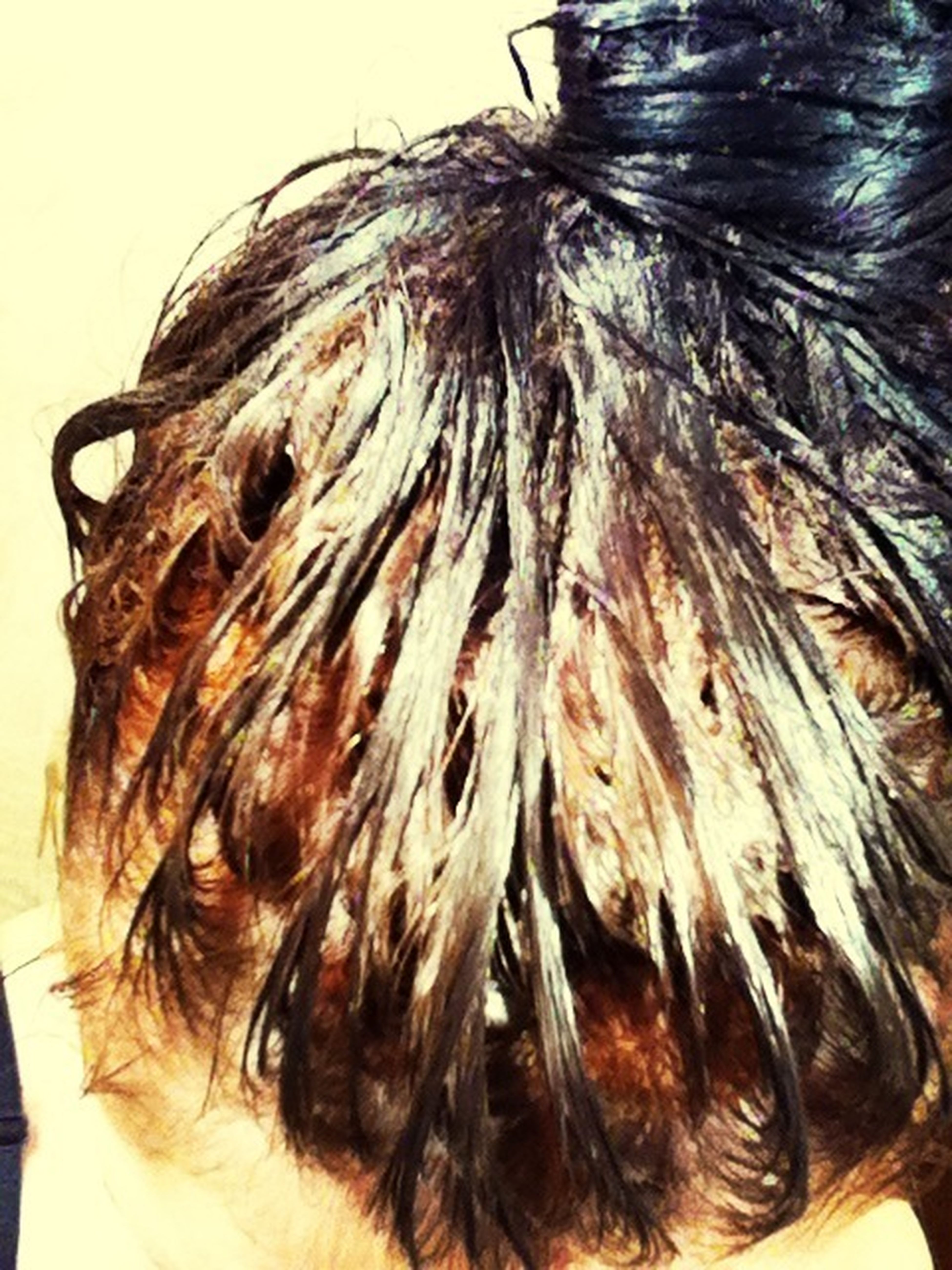 Dying My Hair