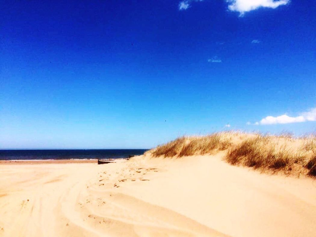 on my way to the green gable's house @ PEI,🇨🇦 Beach Blue Sand Sea Horizon Over Water Tranquil Scene Tranquility Clear Sky Water Scenics Sunny Calm Shore Beauty In Nature Day Vacations Coastline Nature Sandy Non-urban Scene
